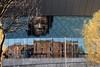 The Echo Arena Liverpool England (philippe.Onwire) Tags: theechoarena museumofliverpool echoarenaliverpool kingsdock alexandratower 1princesdock princesdock liverpoolmarina coburg brunswickdocks thewheelofliverpool bluecoatchambers merseysidemaritimemuseum internationalslaverymuseum tateliverpool thebeatlesstory wetdock theolddock 1715 hydraulic cranes albertdock 1846 liverpool uk england accliverpool thebtconventioncentre thecapitalofculture accliverpoolgroup unesco cityofmusic