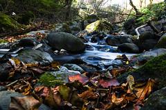 Nikko -  (-hidehito-) Tags:    nikko water waterfall
