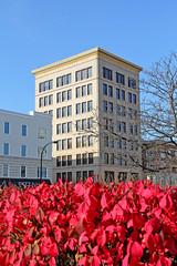 AC&Y Building in Akron (craigsanders429) Tags: akronohio cities city tallbuildings burningbush red downtownakronohio cityscapes oldbuildings buildings 12eexchangestreet acybuilding