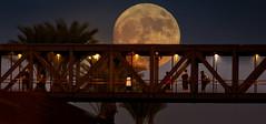 Watching the Supermoon (East of 29) Tags: sliderssunday watchingthesupermoon fullerton moon overpass fullertontrainstation supermoon