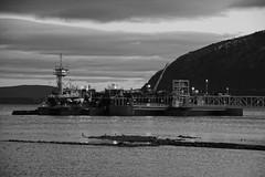 Tugboat Viking (thetrick113) Tags: tugboatviking viking barge fuelbarge fuelterminal offload petroleum petroleumbarge kirbyoffshoremarine tugboat hudsonriver hudsonvalley hudsonrivervalley hudsonhighlands newwindsornewyork orangecountynewyork blackandwhite globalfuelterminal water river workingvessel vessel sonyslta65v clouds dusk evening