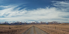 From Maniototo with Love (Peter Kurdulija) Tags: geo:lat=4519681010 geo:lon=17002834530 geotagged gimmerburn newzealand nzl otago new zealand maniototo plain hill winter snow sky white cloud paddock nature gravel dirt road rural wide pano kurdulija