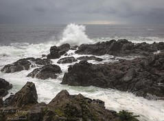 Storm watching in Ucluelet, BC (Freshairphotography) Tags: pacificocean ucluelet iloveucluelet westcoast hightide tidal winterstorm stormyseas stormwatching rocksandwater vancouverisland wildpacifictrail pacificrim beautifulbc crashingwaves waves