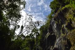 大自然を感じるツマログ滝 (Mr. and Mrs. Manpuku) Tags: フィリピン