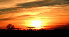 Zonsondergang panorama | Limburgs landschap   --HDR-- (Frank Berbers) Tags: hdr highdynamicrange imagerieàgrandegammedynamique panorama panoramabild panoramicphotography panoramafotografie photographiepanoramique limburgslandschap zuidlimburg hoensbroek landschap landscape landschaft paysage zonsondergang sunset sonnenuntergang coucherdusoleil goudenuurtje goldenhour magichour heuredorée goldenestunde nikoncoolpixp610