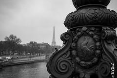 Cocorico effeil (Hermann.Click) Tags: paris tour effeil city architecture paysage coq symbole seine eau pont bridge monochrome noir blanc