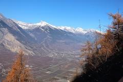 automne (bulbocode909) Tags: valais suisse isrables montagnes nature automne arbres mlzes paysages plainedurhne bleu orange neige
