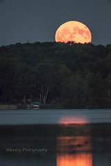 2016 Aug 18 moon - -6 (Rule-of-third-s) Tags: moon lunar sky water lake relfection trees moonrise