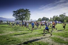 Spirit Run 2015-6