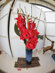 Japanese Flower Arrangement (nano.maus) Tags: fisheye lauritzengardens japaneseflowerarrangement omahabotanicalsociety japaneseambiencefestival