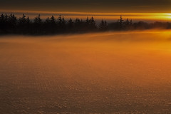 No. 1027 Golden Haze (H-L-Andersen) Tags: morning trees sun mist fog rural sunrise landscape denmark golden landscapes glow farming farmland manfrotto 6d sindal landoflight ef24105mmf4 canoneos6d hlandersen