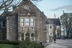 A VISIT TO GRANGEGORMAN COLLEGE CAMPUS [CANON EF 100-400 L IS LENS MOUNTED ON SONY ILCE-A7RM2]-110017
