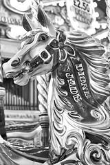carousel horse (hedphoto) Tags: nottingham horse fairground carousel fairgroundride carouselhorse goosefair