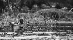 DSC_0858 (Jorge kaplan) Tags: africa lake lago nikon kenya safari d750 hippo nikkor kenia masai 28300mm hipopotamo naivasha