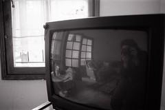 img0030 (zplateson) Tags: bw television analog turkey tv minolta minoltax700 screen ilfordhp5 analogue filmcamera ilford filmphotography blackandwhitefilm siyahbeyaz analogcamera filmisnotdead