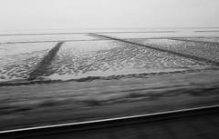 * (elisachris) Tags: travel blackandwhite nature landscape natur sylt landschaft nordsee weite ricohgr watt reise norddeutschland schwarzweis hindenburgdamm