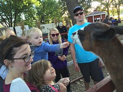 """Paul and Inde Feed a Llama • <a style=""""font-size:0.8em;"""" href=""""http://www.flickr.com/photos/109120354@N07/22596194584/"""" target=""""_blank"""">View on Flickr</a>"""