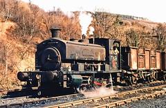 Industrial Steam. (curly42) Tags: steam ncb industrialsteamloco railway 040