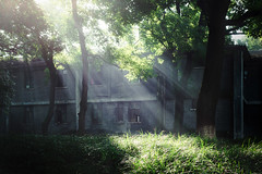 Sunshine (Picocoon) Tags: sunshine beam light sun sunny landscape architecture old house chinese hefei anhui china