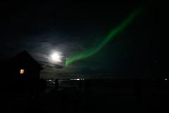 Iceland_2015-236 (agoldmutt) Tags: iceland reykjavik geyser ingvellir northernlights goldencircle gullfosswaterfall