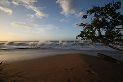 Anse de la Perle (Entangled Photons) Tags: caribbean guadeloupe karibik