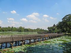 "Yangon: le parc Kandawgyi <a style=""margin-left:10px; font-size:0.8em;"" href=""http://www.flickr.com/photos/127723101@N04/23429521311/"" target=""_blank"">@flickr</a>"