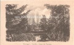 PV097. Portugal - Vizella - Lago do Parque (Biblioteca Municipal Fundao Jorge Antunes) Tags: parque lake lago natureza postal termas arvoredo vizela parquedastermas