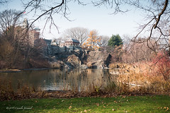 The Remains of Autumn (CVerwaal) Tags: nyc autumn centralpark turtlepond belvederecastle sonyrx100iii