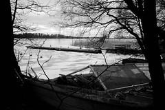 New ice, old boats (Cattail_) Tags: winter snow ice monochrome finland pier boat helsinki vanhankaupunginlahti lammassaari