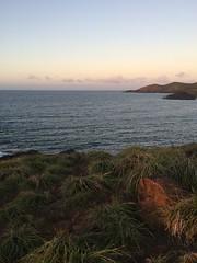 IMG_3515 (elleica) Tags: summer vacation beach islands whitebeach daet camarinesnorte calaguasislands