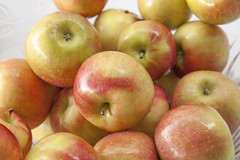 _MG_8445-Apples (tkolami) Tags: rosh hashanah 2016 family service