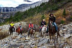 47. Smart - 116 Pictures in 2016 (Krasivaya Liza) Tags: 116picturesin2016 47 smart horse horseback mountain trail lakelouise alberta canada