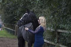 15 oktober 2016-121 (MZorro4) Tags: mariekehaverfotografie oudesluis schagen paardenfotografie portretfotos rijden wwwmariekehaverfotografienlpaarden