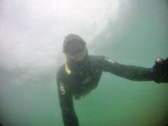 GOPR5904 (ambrogi_taubate) Tags: naturezaselvagem marinha mergulhando ubatuba sp brasil naturezamarinha fantstica apneia 10m setembro primavera 2016