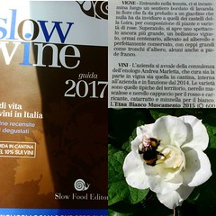 Photo (fischettiwine) Tags: what we do is slow wine want moments share our with you thanks marlettaandrea slowwinemagazine muscamento etnadoc winelover winetime wintour vintage harvest sicily grapes red white rosato moscamentoestate sommelier restaurant gourmet