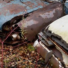 DSC_0064 v2 (collations) Tags: ontario mcleansautowreckers autowreckers wreckers automobiles autos abandoned rockwood derelict junkyards autograveyards carcemeteries