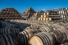 Pile of Whiskey Barrels