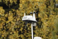 5d MK4 100-400 usm L ii x 2.0 mk3 extender (boddle (Steve Hart)) Tags: 5d mk4 100400 usm l ii x 20 mk3 extender focus manual f11 tv 115 test shot comparison with 14 mkiii