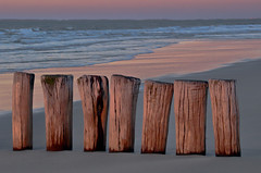 Sieben (efgepe) Tags: 2016 cadzand holland niederlande oktober strand meer sea nordsee pfhle 7 sieben seven farbe color colour viveza nik lightroom beach