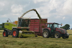 Claas Jaguar 900 SPFH filling a Red Rock Rock Trailer drawn by a Valtra T150 Tractor (Shane Casey CK25) Tags: claas jaguar 900 spfh filling red rock trailer drawn valtra t150 tractor agco green bartlemy silage silage16 silage2016 grass grass16 grass2016 winter feed fodder county cork ireland irish farm farmer farming agri agriculture contractor field ground soil earth cows cattle work working horse power horsepower hp pull pulling cut cutting crop lifting machine machinery nikon d7100 tracteur traktori traktor trekker trator cignik