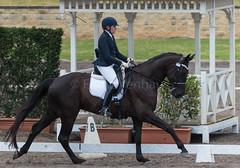 161023_Aust_D_Champs_Sun_Med_4.3_6819.jpg (FranzVenhaus) Tags: athletes dressage australia siec equestrian riders horses performance event competition nsw sydney aus