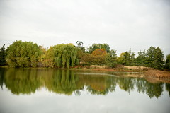 JJN_3039 (James J. Novotny) Tags: chicago conservatory botanical gardens garden flowers flower nikon d750 path paths skokie lagoons