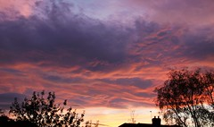 Clouds at Sunset, Friday 28th October 2016 (robin denton) Tags: clouds skyscape sky sun silhouette landscape yorkshire york sunset dusk weather