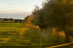 IMG_42437 (David Falck) Tags: train window skne scenery country field tree moving fast high speed