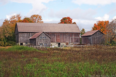 8395 (ontario photo connection) Tags: barns farms rural ontario canada rurallandscape fall autumn landscapes durhamregion pickering claremont