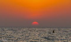 Sunset - Sun over the Horizon in Dubai (lvertel) Tags: sunset sun abu dhabi dubai uae photography amateur landscape sea beach horizon canon sx60