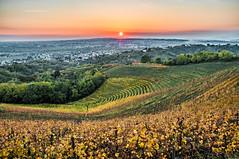 Golden hour at Savorgnano del Torre (Ettore Trevisiol) Tags: ettore trevisiol nikon d300 nikkor 18 70 landscape friuli italy hills colline aquila del torre savorgnano italia autunno autumn tramonto sunset