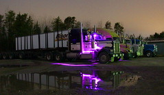 Standin' out (jr-transport) Tags: kenworth w900 custom purple led logging trailex