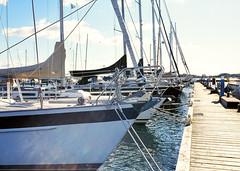 Yachthafen Maasholm (Drte Krell) Tags: meinfilmlab wwwmeinfilmlabde m645 mamiya mediumformat dia slide colour e6 120 analog film harbour hafen maasholm schlei scleswigholstein