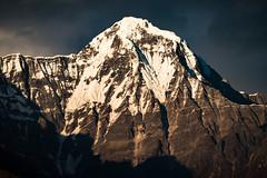 Hiunchuli, Annapurna Himalayas, Nepal (CamelKW) Tags: nepal hiunchuli annapurna himalayas